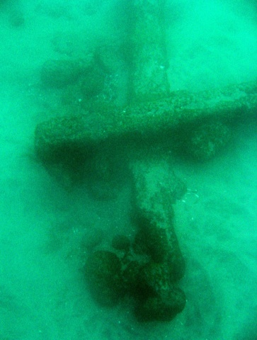Pier remains provide snorkelers an underwater archaeology adventure, and when viewed up close, a dense community of life. c.2005  Judith Garfield